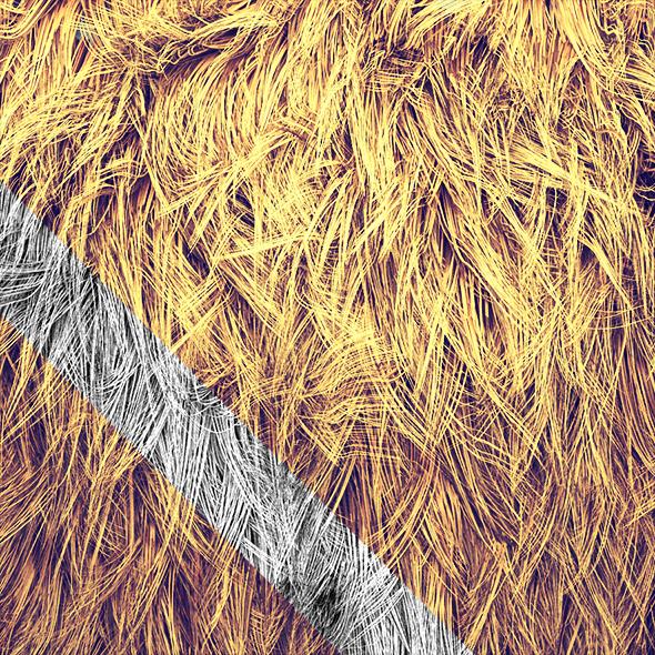 Mongolian Faux Fur  - 3DOcean Item for Sale