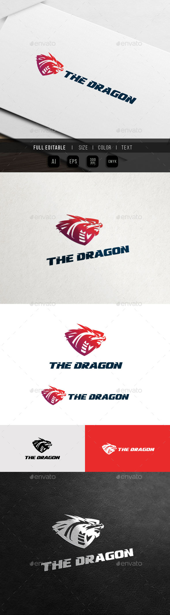 Dragon Shield - Game Team Logo