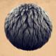 Dark Hair Clump