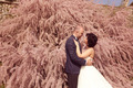 Bride and groom embracing in nature