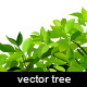 Realistic vector tree - GraphicRiver Item for Sale