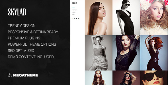 theme preview.  large preview - Skylab - Portfolio / Photography WordPress Theme