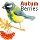 Floral Collection Autumn Berries