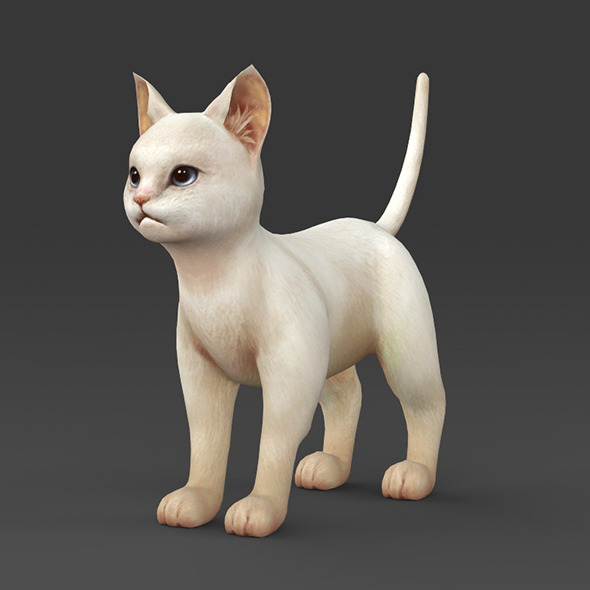 White Kitten - 3DOcean Item for Sale