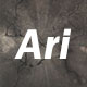 Ari_Des