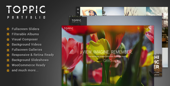 10 - TopPic - Photography Portfolio Theme
