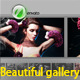 Beautiful gallery - VideoHive Item for Sale
