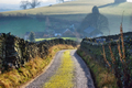 Farm track - PhotoDune Item for Sale