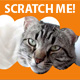 Scratch Me! - ActiveDen Item for Sale