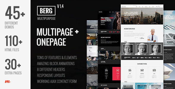 18. Berg - Multipurpose One Page & Multi Page Template
