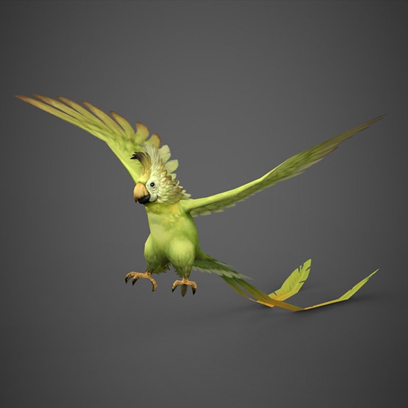 Game Ready 3D Parrot Bird - 3DOcean Item for Sale