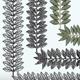Laurel Branches