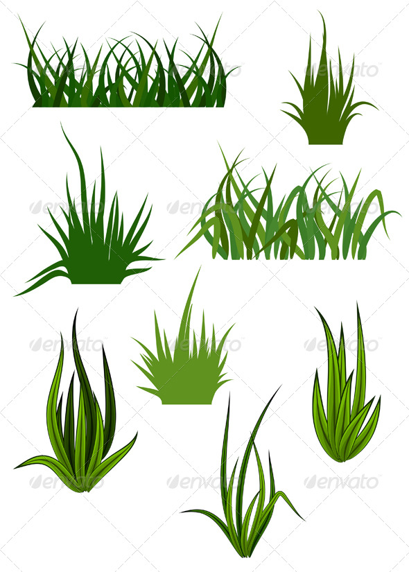 Green Grass Elements for Design