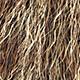 Shave Animal Fur4