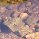 HD Rocky River - VideoHive Item for Sale
