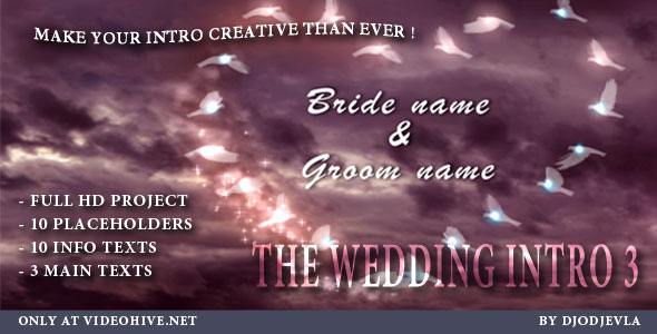 After Effects Project - VideoHive The Wedding Intro 3 155402