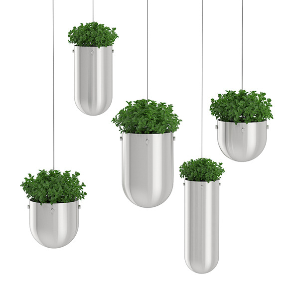 Plants in Metal Hanging Pots - 3DOcean Item for Sale
