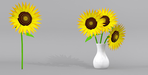Sunflower and Sunflowers with Pots 3D Model - 3DOcean Item for Sale