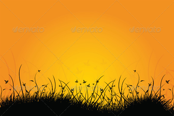 Amazing Natural Sunrise Landscape with grass