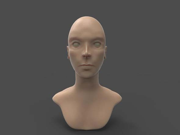 basic female head sculpt - 3DOcean Item for Sale