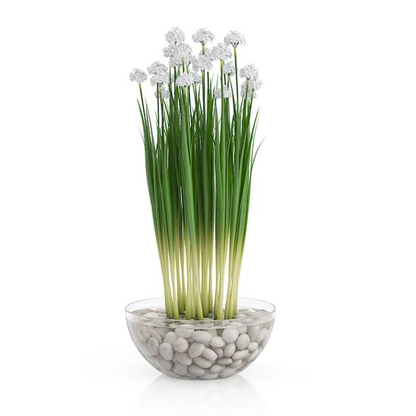Flowers in Glass Vase - 3DOcean Item for Sale