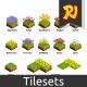 Set of Isometric Tiles Flowers