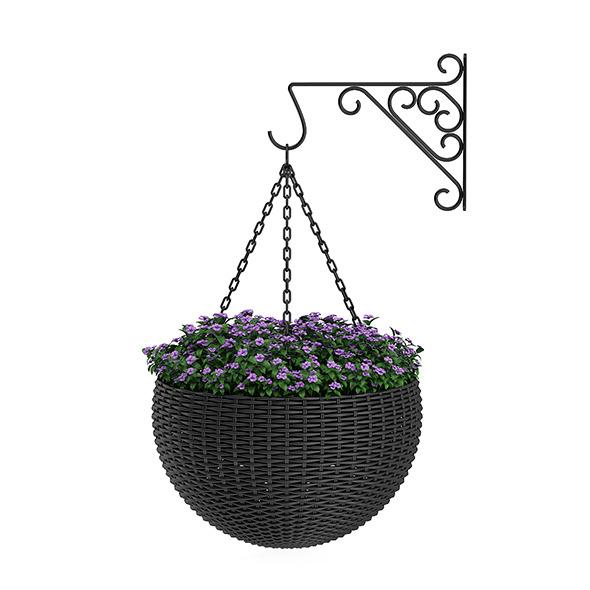 3DOcean Wall Hanging Flowers 12996201