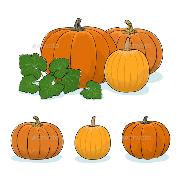 Pumpkin Vegetable, Edible Fruit