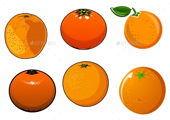 Isolated Ripe And Juicy Orange Fruits