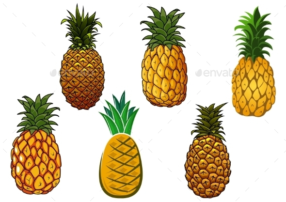 Tropical Ripe Yellow Pineapple Fruits