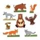 Wild Forest Animals Flat Style Set