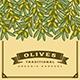 Retro Olive Harvest Card