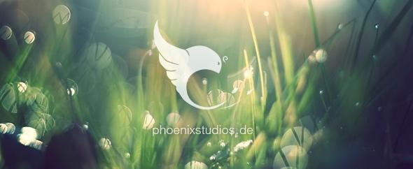 Phoenixstudios_banner