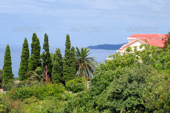 House on seaside - Stock Photo - Images