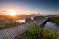 misty sunrise over wooden path on lake