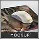 Mousepad/Mouse Mock-up