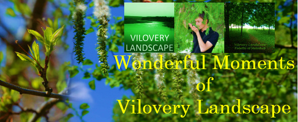 Wonderful-Moments-of-Vilovery-Landscape