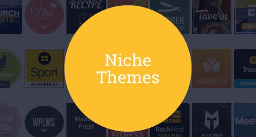 20+ Niche Themes