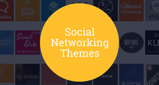 20 Social Networking Themes