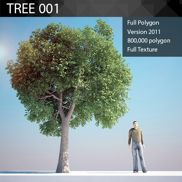 ED Tree Model 001 - 3DOcean Item for Sale