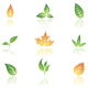 Leaves - GraphicRiver Item for Sale