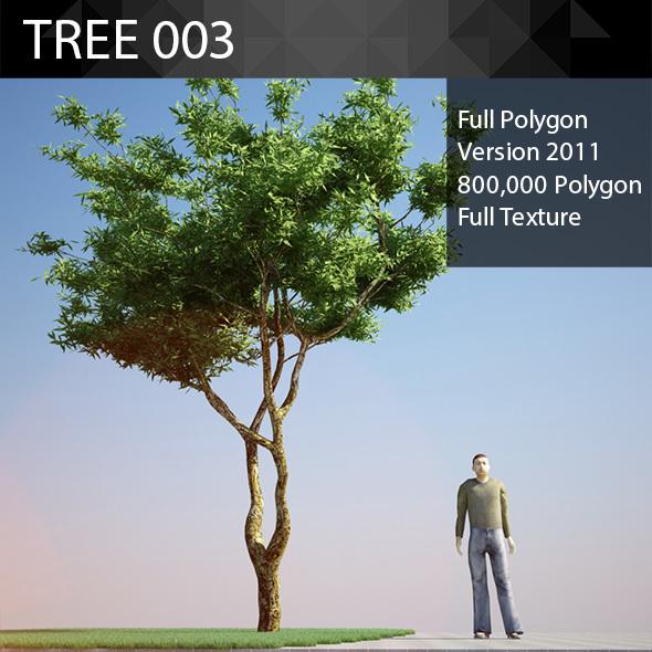 ED Tree Model 003 - 3DOcean Item for Sale