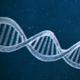 DNA Logo (2-pack)