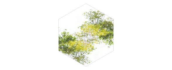 SpaceBoxMusic