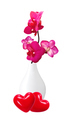 Beautiful flower Orchid, pink phalaenopsis in vase isolated on w