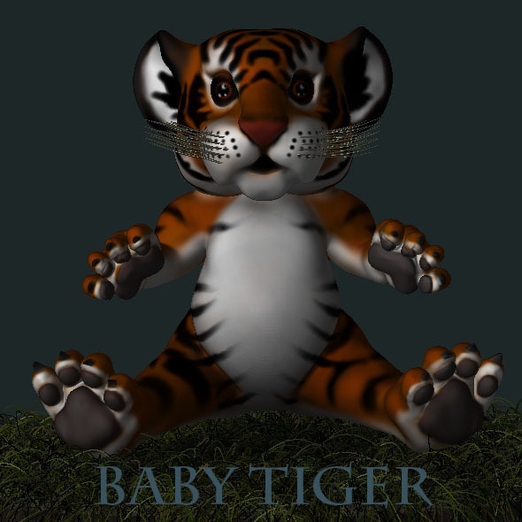 Baby Tiger - 3DOcean Item for Sale