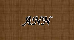 ann_logo
