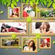 10 Exceptional Natural & Semi Transparent Photo Te