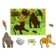 Jungle Animals Cartoon Educational Game