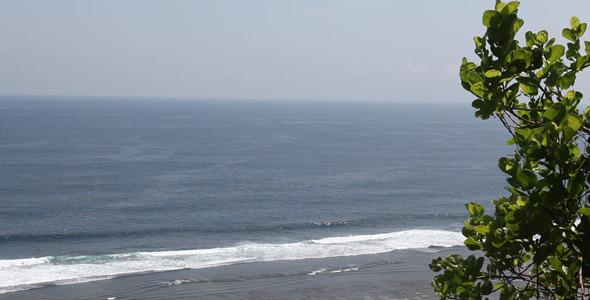 Tree Over Ocean